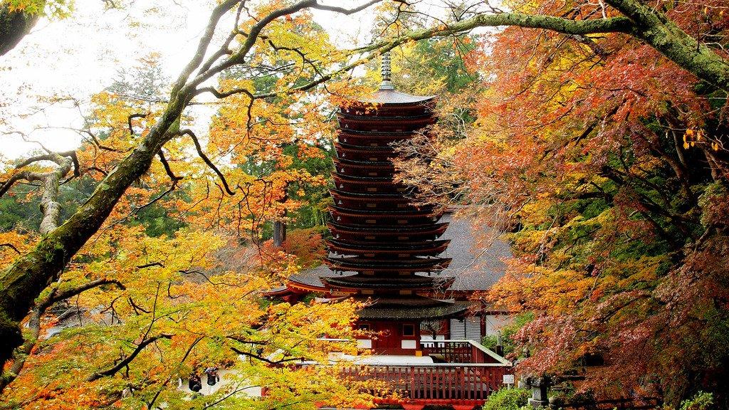 tanzan_shrine_fall_foliage