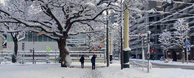 10 Best Things to Do in Sapporo in Winter