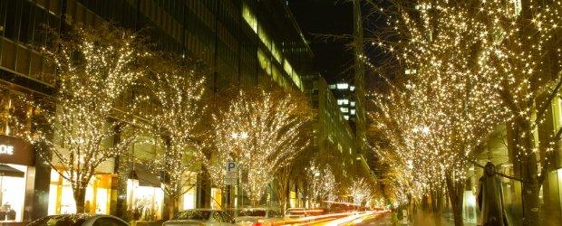 2020/2021 Winter Illuminations in Tokyo